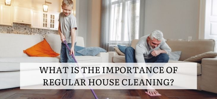 What is the importance of regular house cleaning